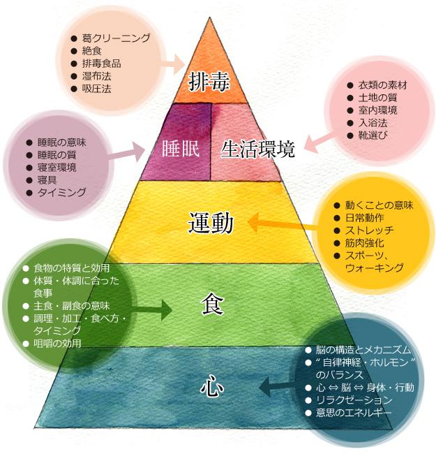 健康ピラミッド