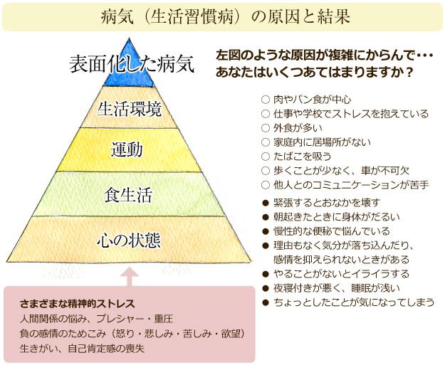 イラスト-ピラミッド病気