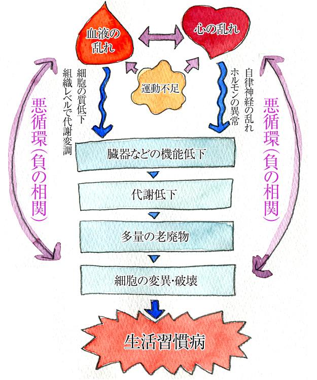 図版・生活習慣病の原因