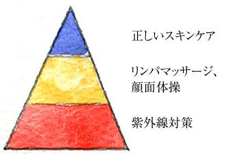 美肌ピラミッド拡大